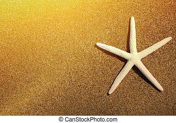 金, 光線, 星, 太陽, 海, 浜, 砂