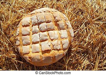 金, 小麦, わら, ロールパン, ラウンド, bread