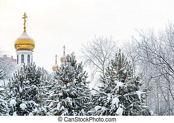 金, 正統派的信仰, 雪, シンボル, forest., ?hurch, 道, 信頼, ドーム