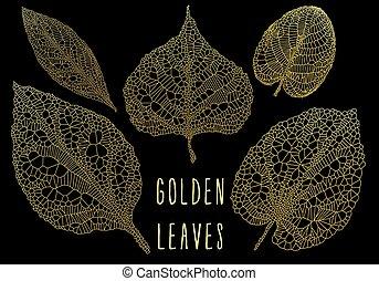 金, 葉, ベクトル, セット, 静脈