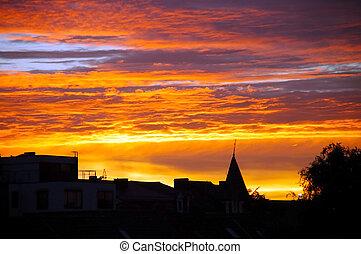 金, 都市, sunset.