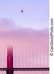 金, 霧, 飛行機, 門