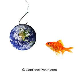 釣魚, 地球, 誘餌