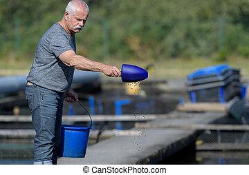 釣魚, 漁夫, 工作, 工業