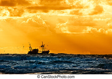 釣魚, 船, 在海