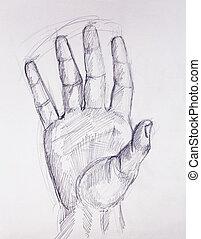 鉛筆, スケッチ, 古い, 手, ペーパー, 図画