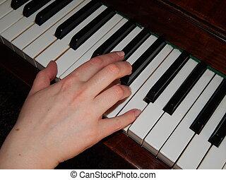 鋼琴鑰匙, 手