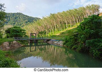鋼鉄, 橋, 貯蔵, コンクリート, 小さい, 池