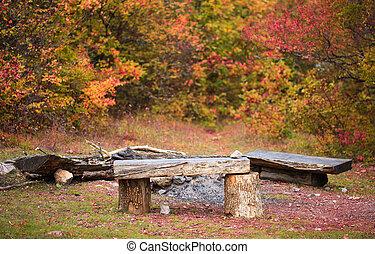 長凳, 木制, 秋天, 站點, 森林, 離開, 被下跌, 篝火, 草地