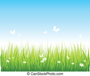 長滿草, 綠色的領域, 以及藍色, 天空