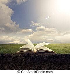 開いている聖書, 上に, 地面
