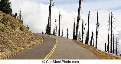 開いている道路, 傷つけられる, 風景, 爆発, 地域, セントヘレン山, 火山