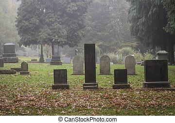 開拓者, 霧, 古い, 墓地