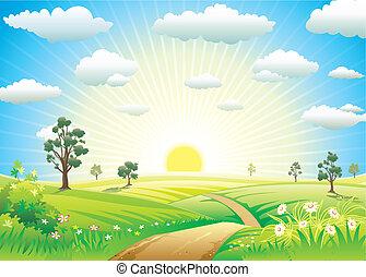 阳光充足, 草地