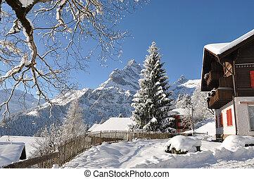 阿尔卑斯山, 景色, braunwald, 瑞士