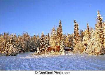 阿拉斯加, 原木小屋, 在, 冬天