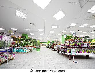 陶器, 植物, 棚, 中, 変化, スーパーマーケット, 大きい花