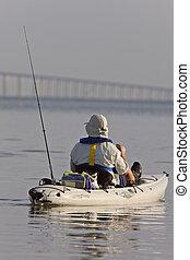 陽光, 航線橋梁, tampa, 佛羅里達