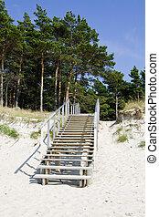 階段, 夏, 浜