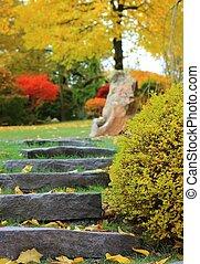 階段, 石の庭, 日本語