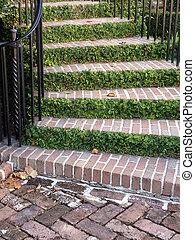 階段, 草木の栽培場
