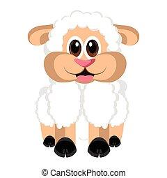 隔離された, かわいい, sheep
