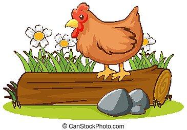 隔離された, 丸太, 映像, 鶏