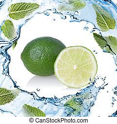 隔離された, 水, はね返し, 緑の白, ミント, ライム