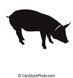 隔離された, 豚, シルエット