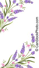 雅致, 卡片, 由于, 淡紫色, flowers.