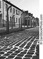 集中, auschwitz, -, 波兰, 营房