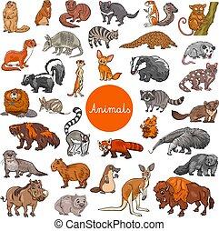 集合, 動物, 哺乳動物, 字符, 大, 荒野