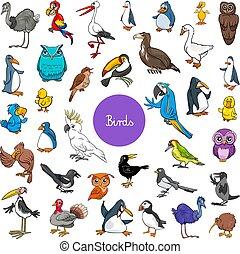 集合, 動物, 大, 卡通, 字符, 鳥