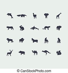 集合, ......的, 哺乳動物, 圖象