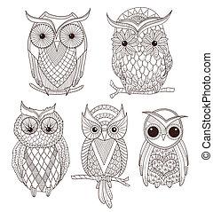 集合, ......的, 漂亮, owls.