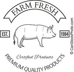 集合, ......的, 農業, 矢量, 標簽, 設計元素