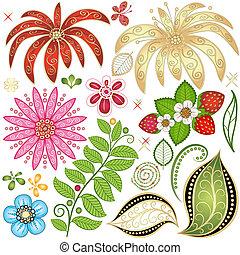集合, 鮮艷, 植物群的設計, 元素