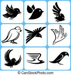 集合, 鳥, 圖象