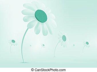 雛菊, 生長, 在, a, meadow., 每件事, 是, 蓋, 在, mist.