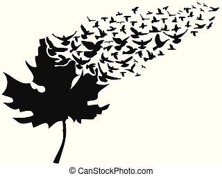 離れて, 飛行, 葉, 鳥, かえで