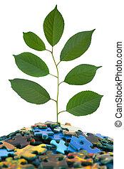 難題, 植物