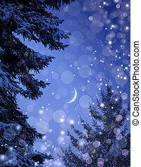 雪が多い, 森林, 上に, クリスマス, 夜