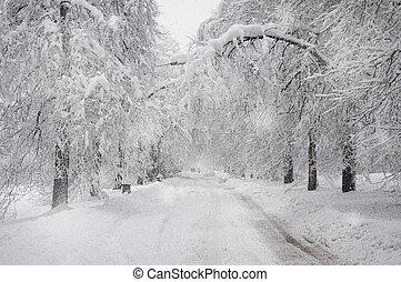 雪が多い, 道