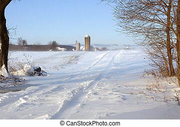 雪, 吹く, 上に, 田園道