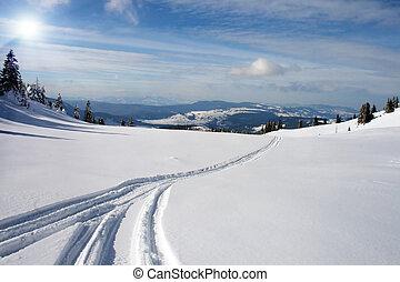 雪, spoor