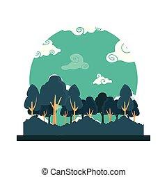 雲, 木, 空, 森林, 風景