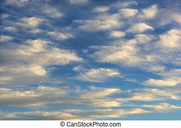 雲, 毛状突起