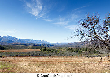 雲, 自然, swartberg, 木, 話し, 予備