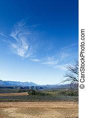 雲, 自然, swartberg, -, 話し, 予備