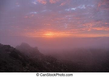 雾, 日出, 在中, 洛杉矶, 加利福尼亚